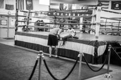 5603-boxing-1